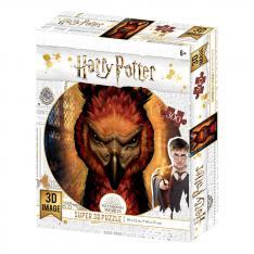 PUZZLE 3D LENTICULAR HARRY POTTER FENIX 300 PIEZAS