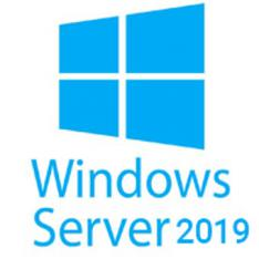 WINDOWS SERVER 2019 5 LICENCIAS CAL ESPAÑOL