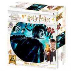 PUZZLE 3D LENTICULAR HARRY POTTER HARRY POTTER 500 PIEZAS